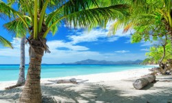 Beautiful Pictures of Summer Beach HD Wallpaper screenshot 5/6