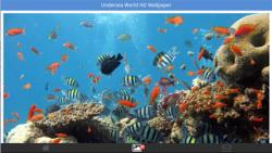 Undersea World HD Wallpapers screenshot 3/6