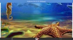 Undersea World HD Wallpapers screenshot 5/6
