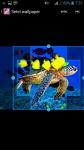Fish HQ Wallpaper screenshot 3/4