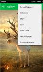 My HD Wallpapers Mobile App screenshot 6/6