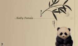 Cute Panda Images Wallpaper screenshot 2/6