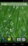 Grass 3D Live Wallpaper screenshot 1/4