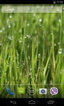 Grass 3D Live Wallpaper screenshot 3/4