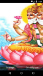 Beautiful Brahma Live Wallpaper HD screenshot 5/6