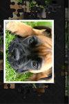 puzzler kids puppies screenshot 3/4