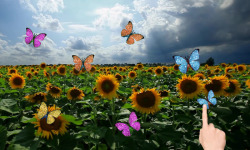 Sunflowers and butterflies screenshot 1/3