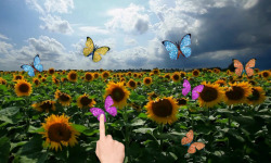 Sunflowers and butterflies screenshot 2/3