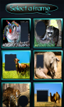 Funny Animals Photo Frames screenshot 2/6
