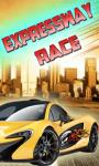 Expressway Race screenshot 1/1