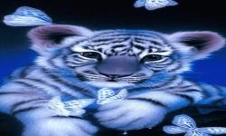 Blue Baby Tiger LWP screenshot 2/3