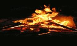 Wood Fire Live Wallpaper screenshot 2/3