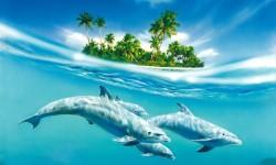 HQ Dolphin Live Wallpaper screenshot 2/4