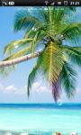 Tropical Palm Beach Live Wallpaper screenshot 1/6