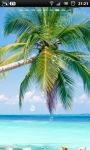 Tropical Palm Beach Live Wallpaper screenshot 2/6