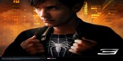 Spiderman Movie 3D Wallpaper HD screenshot 2/6