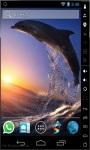 Jumping Dolphin LWP screenshot 1/2