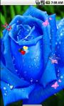 Blue Roses Live Wallpaper screenshot 1/4