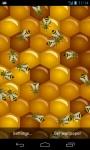 Bee Live Wallpaper HD screenshot 1/5