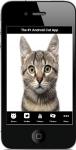 Cat Facts 2 screenshot 1/4