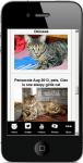 Cat Facts 2 screenshot 4/4