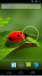 Nature FLowers HD Wallpaper screenshot 4/4