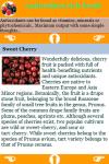 Antioxidant foods rich  screenshot 3/3