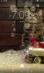 Cats And Bubbles Video Live Wallpaper screenshot 2/4