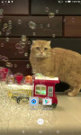 Cats And Bubbles Video Live Wallpaper screenshot 4/4
