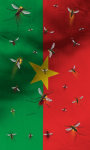 Burkina Faso flag Free screenshot 2/5