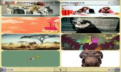 Animal Funny Wallpapers screenshot 1/1