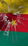 Cameroon flag Free screenshot 1/5