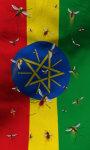 Ethiopia flag lwp Free screenshot 2/5