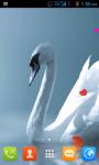 Swans Live Wallpaper Free screenshot 1/4