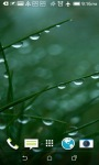 Grass and Rain Live Wallpapers screenshot 3/4