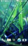 Grass and Rain Live Wallpapers screenshot 4/4