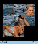Puzzle Pic X screenshot 1/1