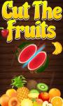 Slice The Fruits screenshot 1/1
