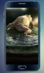 Frog Amazing Graphics LiveWP screenshot 2/3