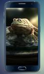 Frog Amazing Graphics LiveWP screenshot 3/3