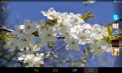 Spring Live screenshot 1/4