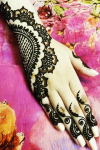 Amazing new Mehndi Designs screenshot 3/3