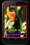 Creepy and Funny Looking Birds screenshot 1/3