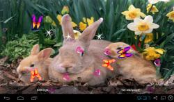 3D Cute Rabbit Live Wallpapers screenshot 1/4