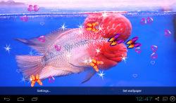 3D Flowerhorn Cichlid Live Wallpaper screenshot 1/5