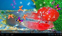 3D Flowerhorn Cichlid Live Wallpaper screenshot 5/5