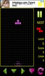 Classic Blocks screenshot 2/4