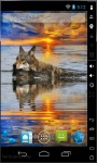 Swim Wolf Live Wallpaper screenshot 1/2
