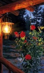 Home Lamp Live Wallpaper screenshot 1/3