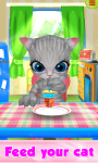 Talking Little Cat And Care screenshot 2/6